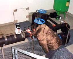Prüfung der abgeschlossenen Pumpensanierung